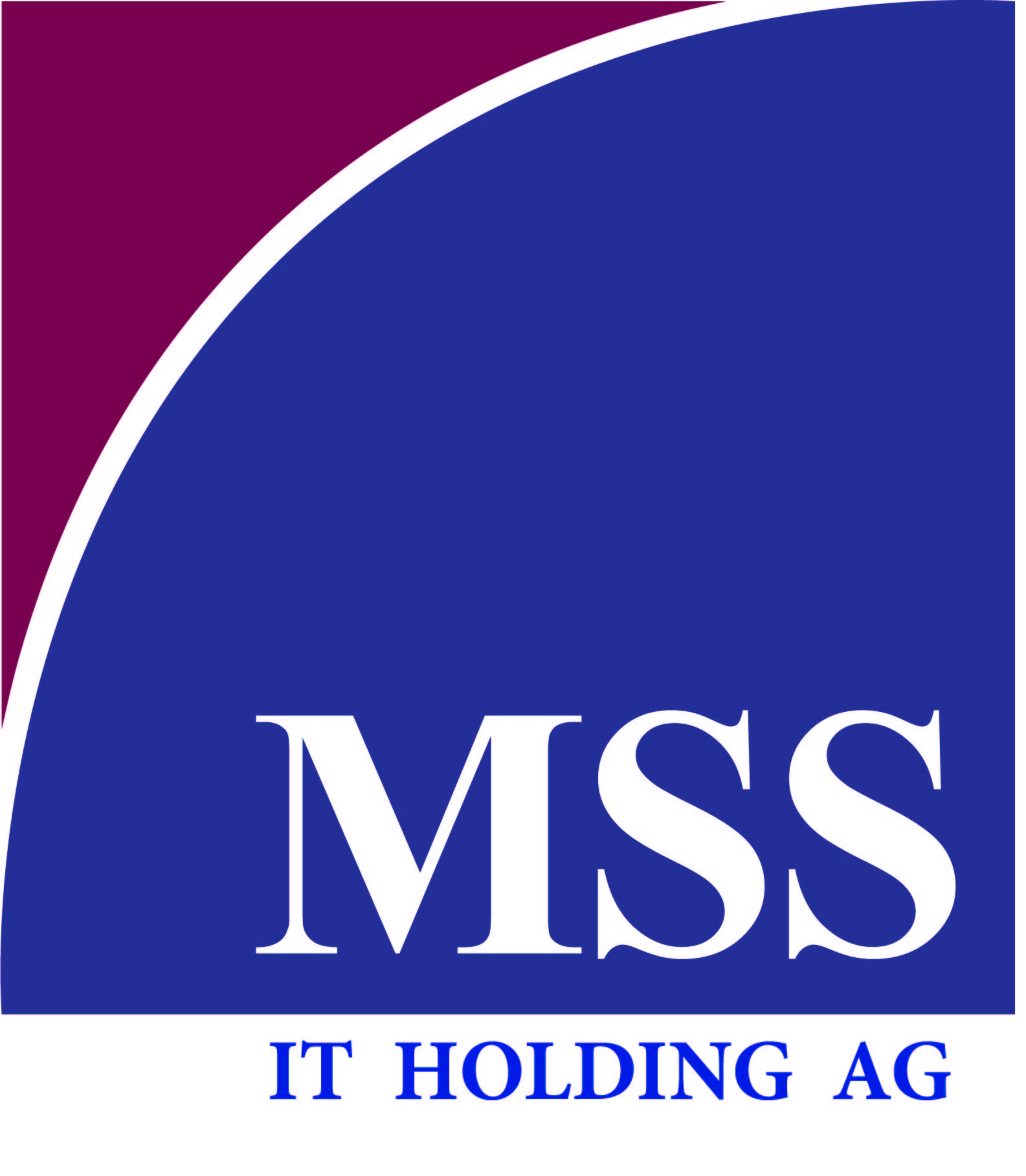 mss_it_holding_ag.jpg